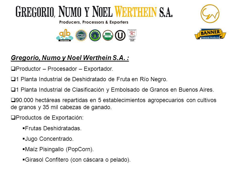 Gregorio, Numo y Noel Werthein S.A. :