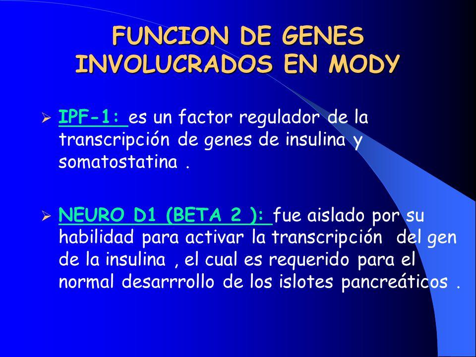 FUNCION DE GENES INVOLUCRADOS EN MODY