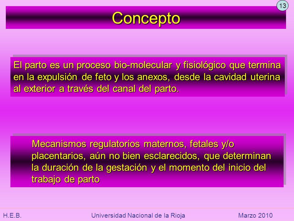 13 Concepto.