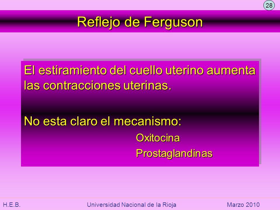 28 Reflejo de Ferguson. El estiramiento del cuello uterino aumenta las contracciones uterinas. No esta claro el mecanismo: