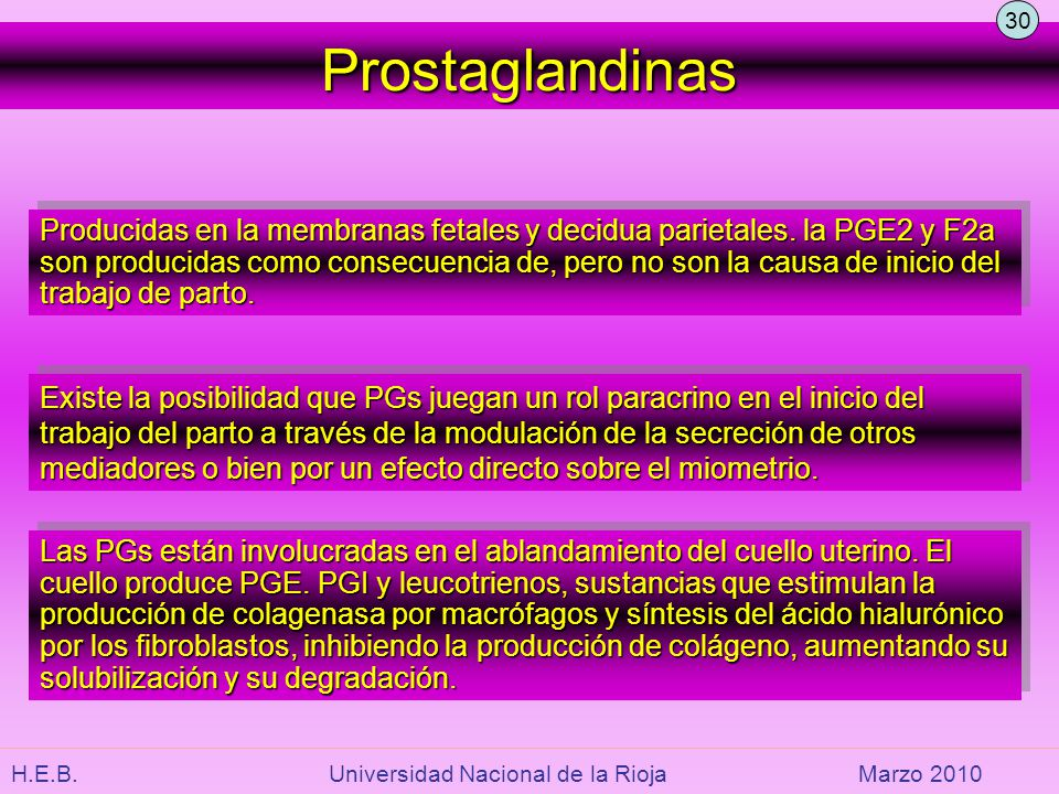 30 Prostaglandinas.