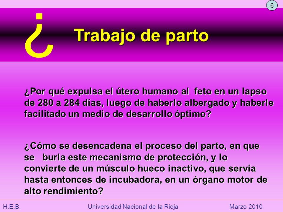 6. Trabajo de parto. ¿Por qué expulsa el útero humano al feto en un lapso. de 280 a 284 días, luego de haberlo albergado y haberle.