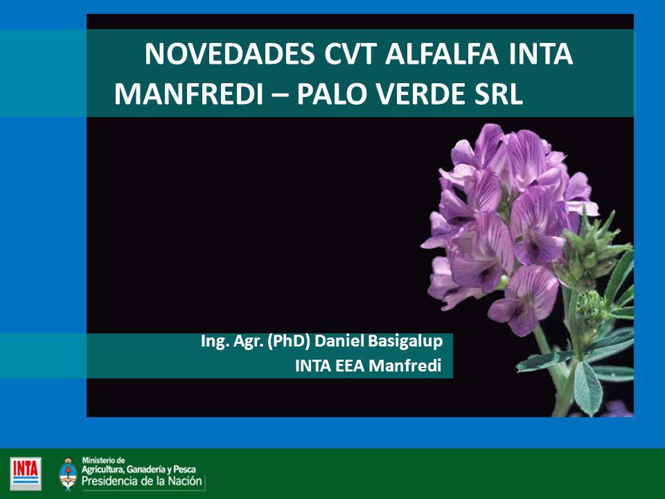 NOVEDADES CVT ALFALFA INTA MANFREDI – PALO VERDE SRL