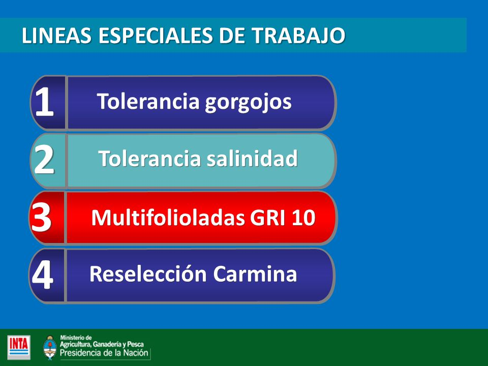 1 2 3 4 LINEAS ESPECIALES DE TRABAJO Tolerancia gorgojos