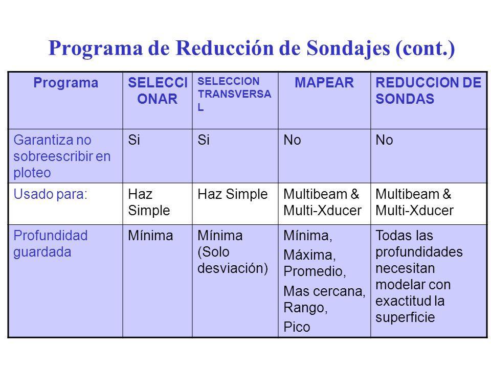 Programa de Reducción de Sondajes (cont.)