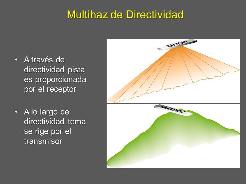 Multihaz de Directividad