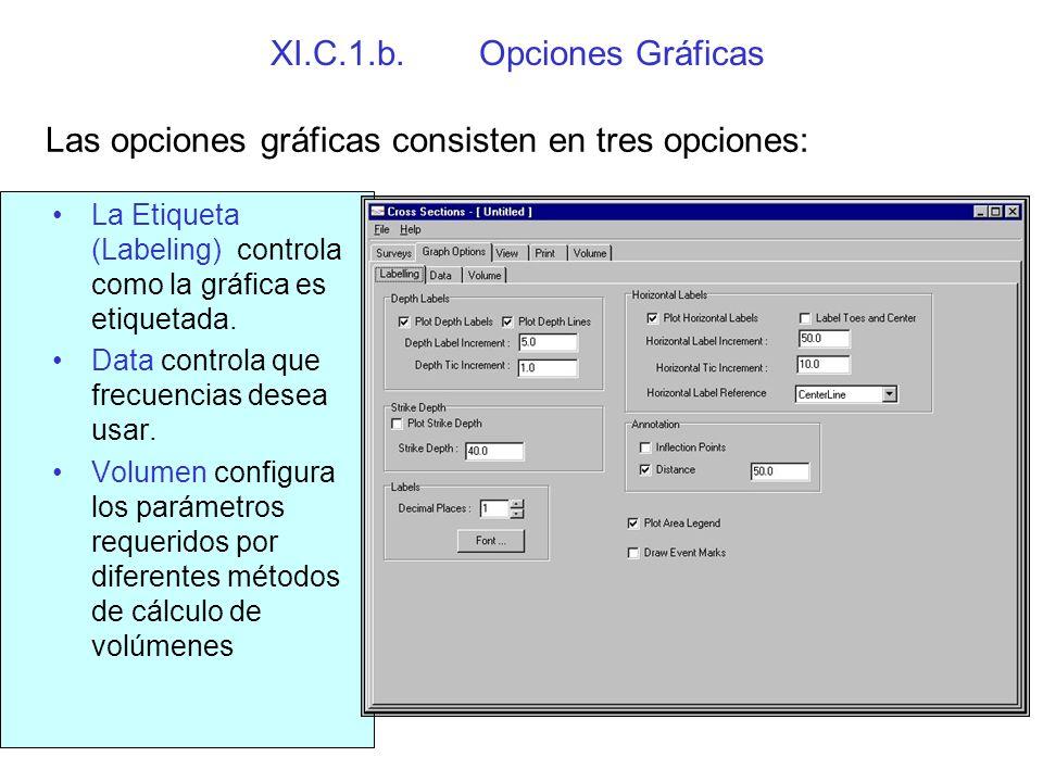 XI.C.1.b. Opciones Gráficas