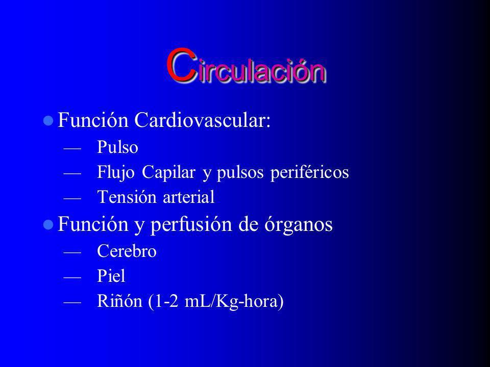 Circulación Función Cardiovascular: Función y perfusión de órganos