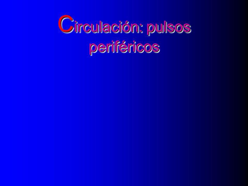 Circulación: pulsos periféricos