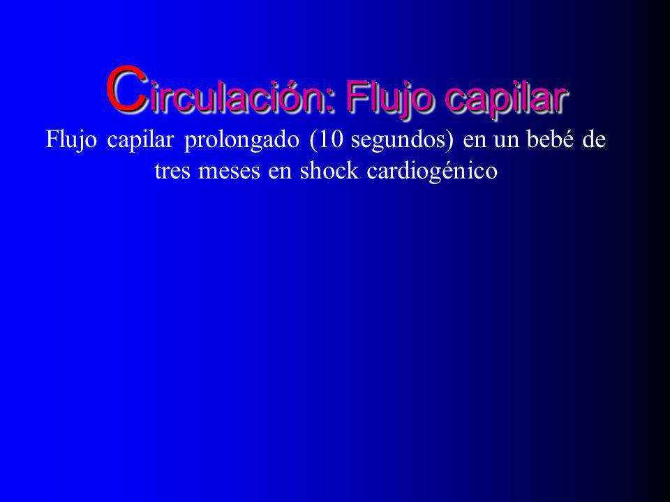 Circulación: Flujo capilar