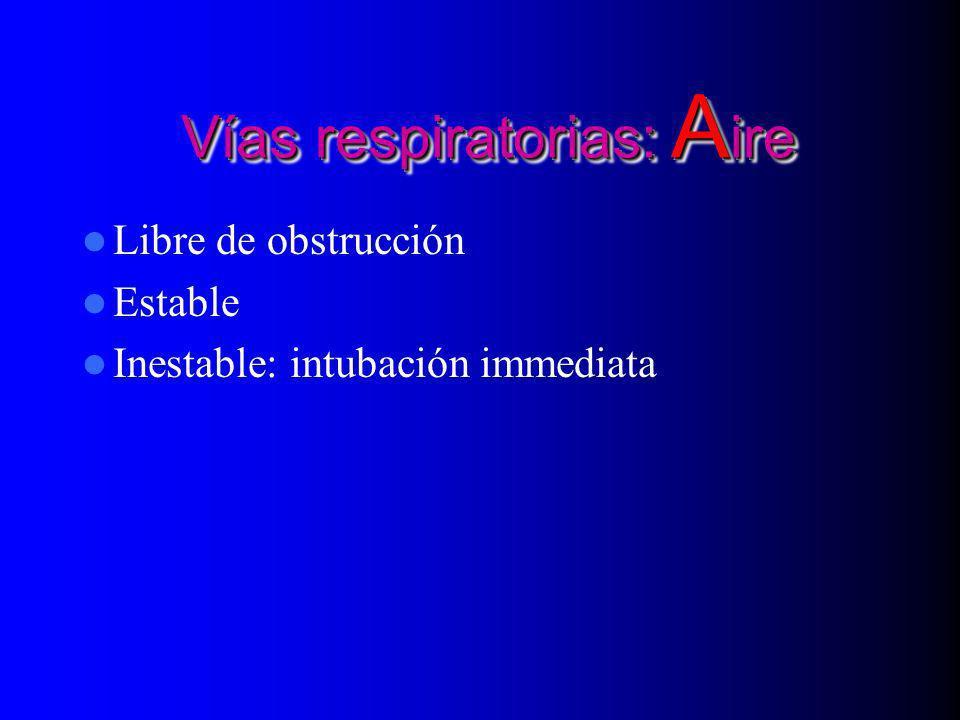 Vías respiratorias: Aire