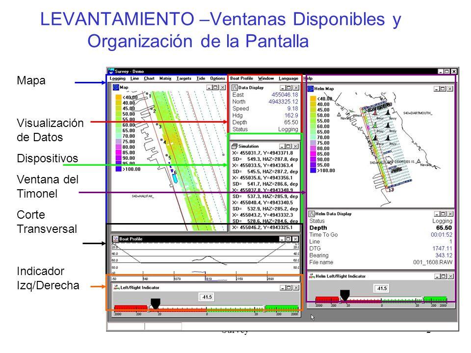 LEVANTAMIENTO –Ventanas Disponibles y Organización de la Pantalla