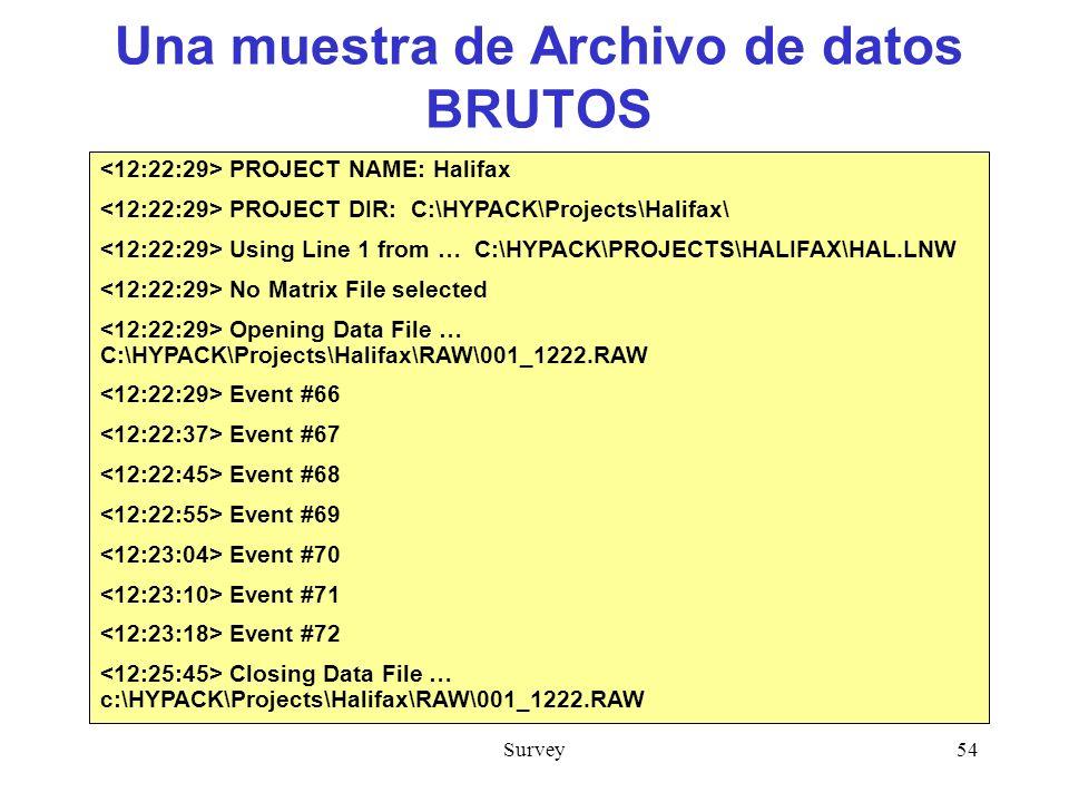 Una muestra de Archivo de datos BRUTOS