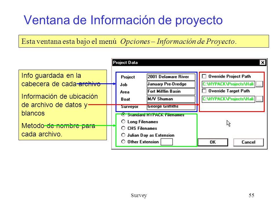 Ventana de Información de proyecto
