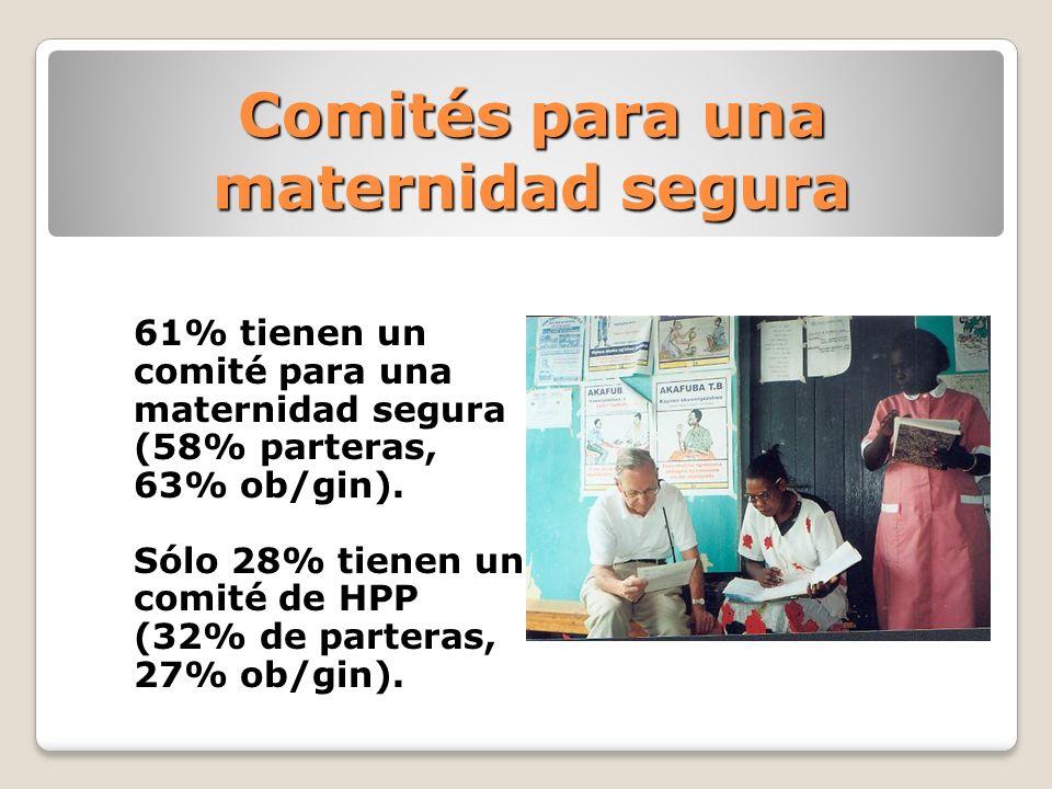 Comités para una maternidad segura