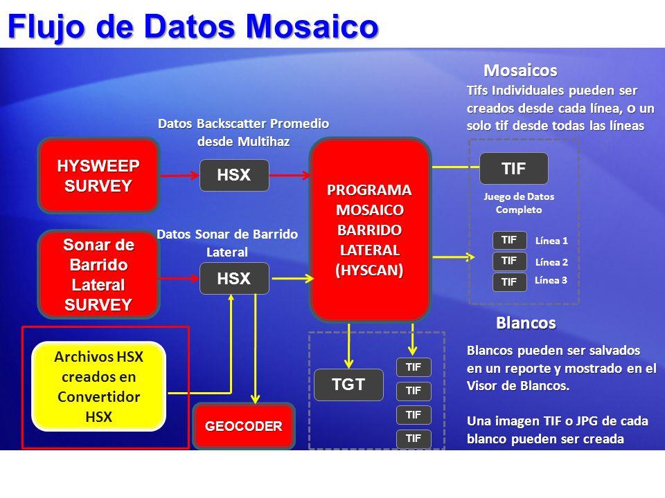 Flujo de Datos Mosaico Mosaicos Blancos HYSWEEP SURVEY TIF
