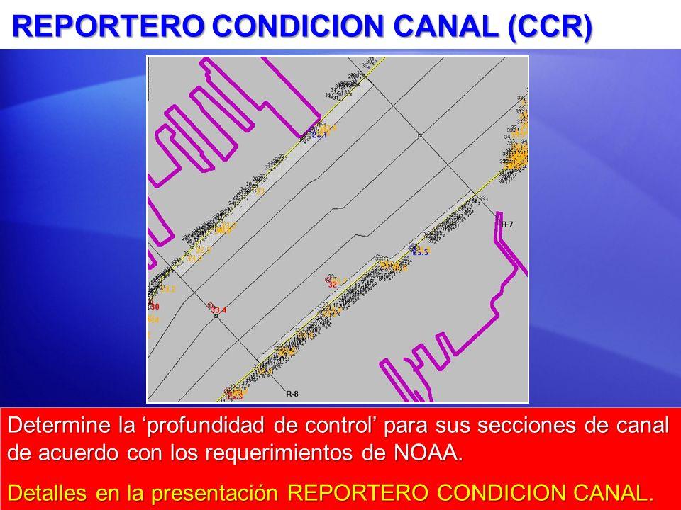 REPORTERO CONDICION CANAL (CCR)