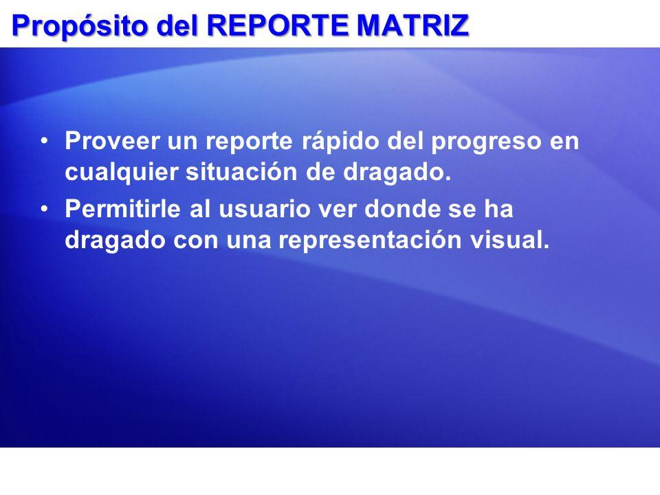 Propósito del REPORTE MATRIZ