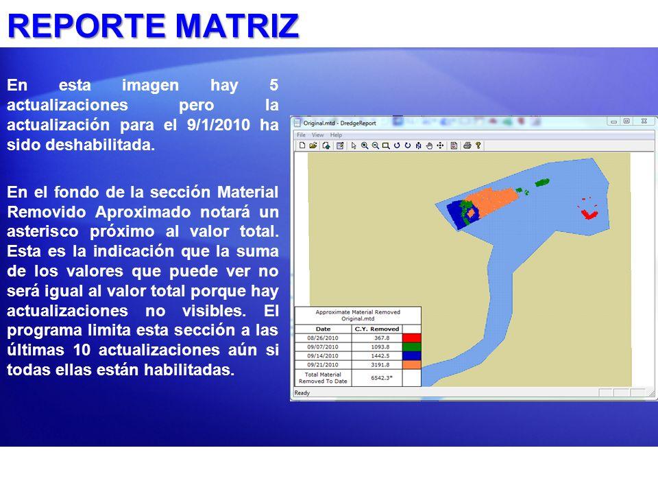 REPORTE MATRIZ En esta imagen hay 5 actualizaciones pero la actualización para el 9/1/2010 ha sido deshabilitada.