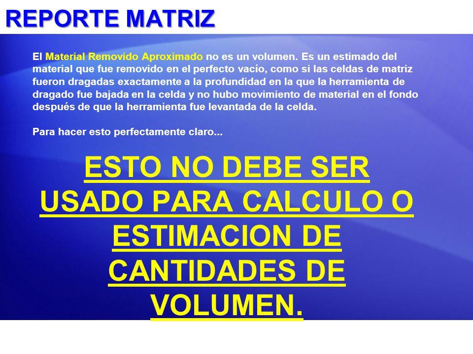 REPORTE MATRIZ