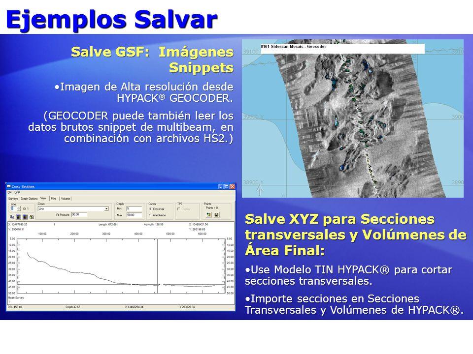 Ejemplos Salvar Salve GSF: Imágenes Snippets