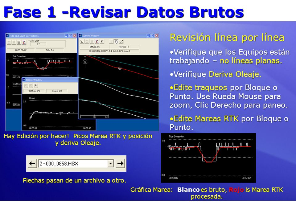 Fase 1 -Revisar Datos Brutos