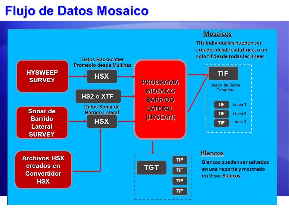 Flujo de Datos Mosaico Mosaicos PROGRAMA MOSAICO BARRIDO LATERAL TIF