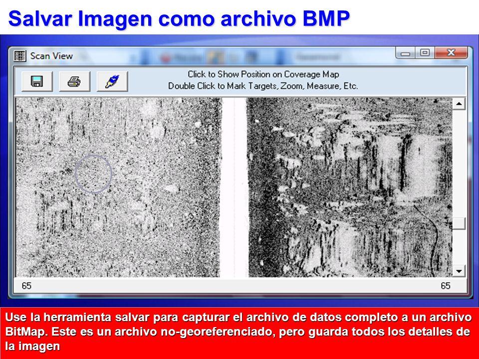 Salvar Imagen como archivo BMP