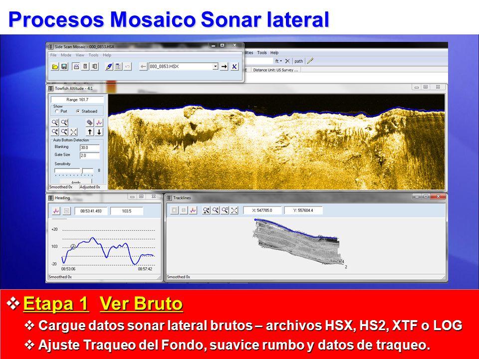 Procesos Mosaico Sonar lateral