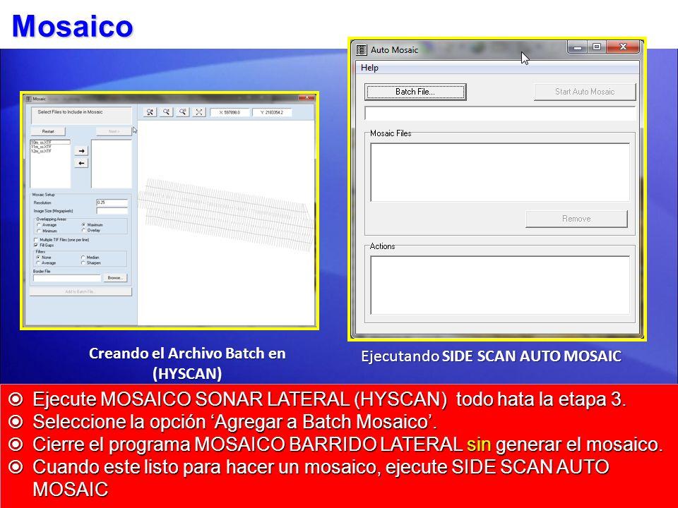 Creando el Archivo Batch en (HYSCAN)