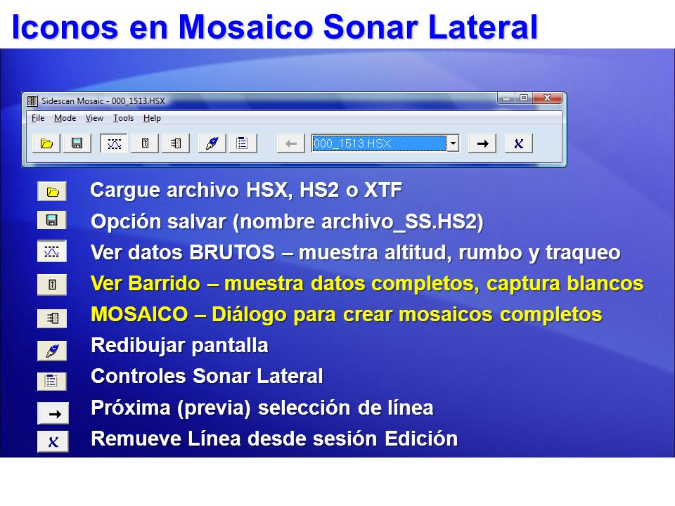 Iconos en Mosaico Sonar Lateral