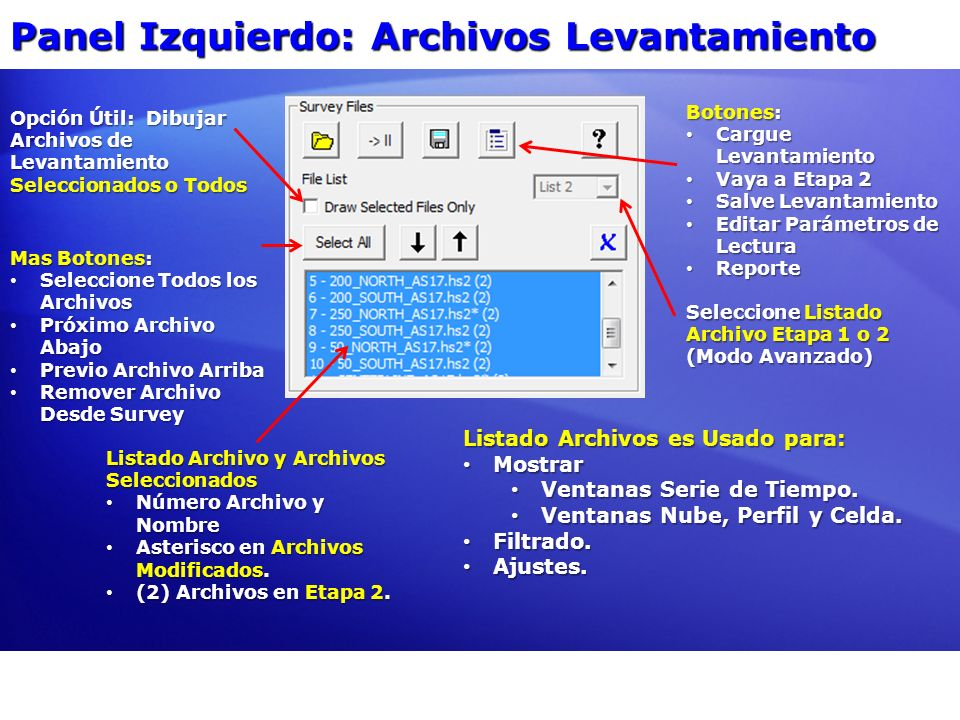 Panel Izquierdo: Archivos Levantamiento