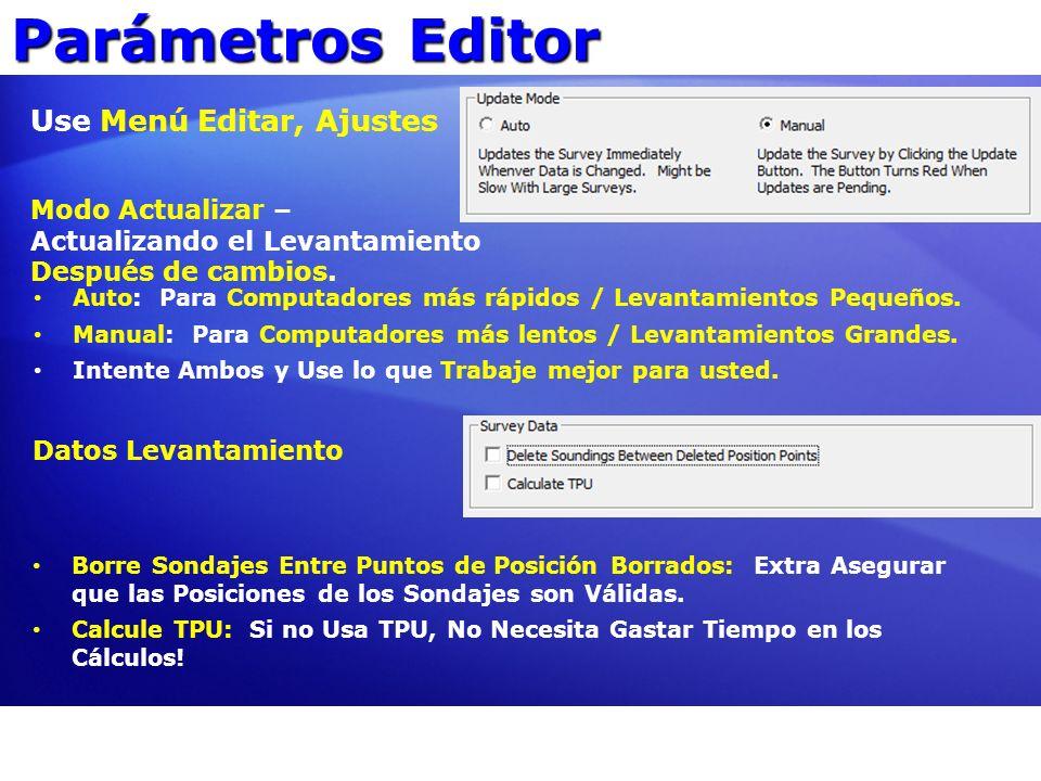 Parámetros Editor Use Menú Editar, Ajustes