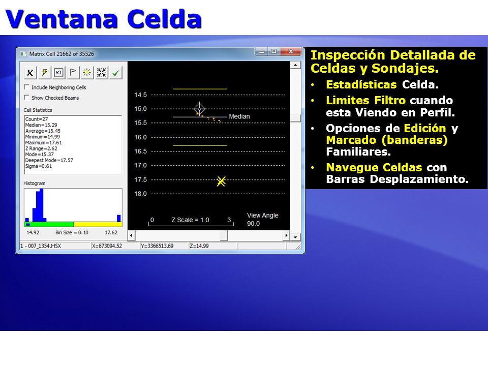 Ventana Celda Inspección Detallada de Celdas y Sondajes.