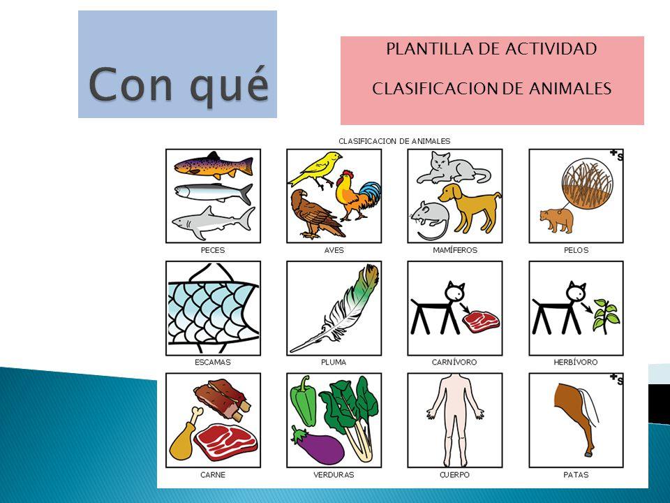 Con qué Plantilla de Actividad CLASIFICACION DE ANIMALES