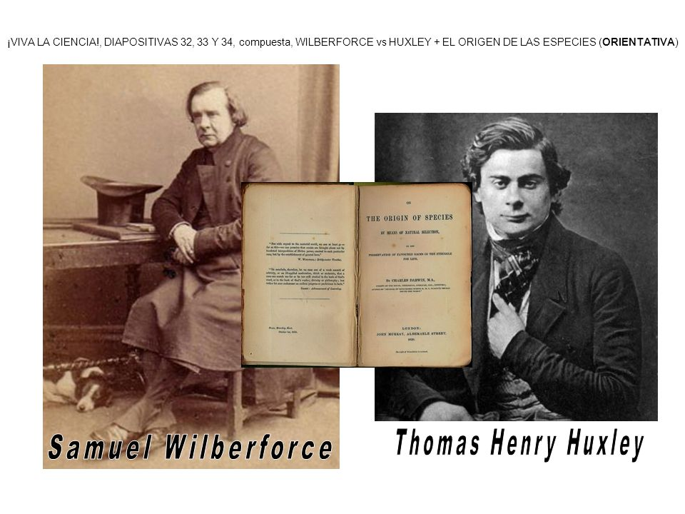 Thomas Henry Huxley Samuel Wilberforce