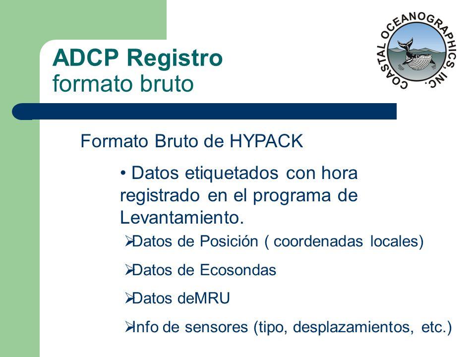 ADCP Registro formato bruto