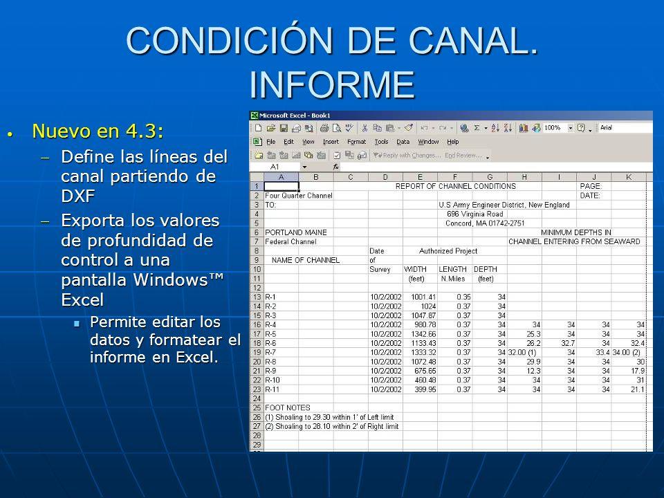 CONDICIÓN DE CANAL. INFORME