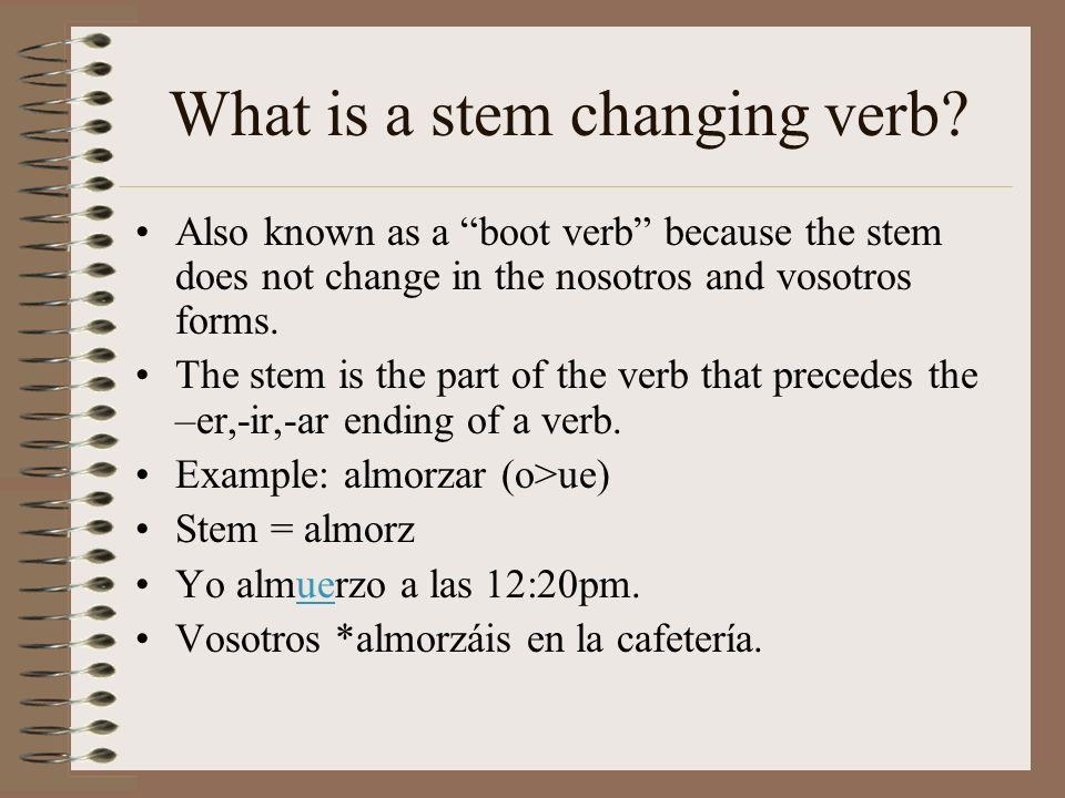 What is a stem changing verb