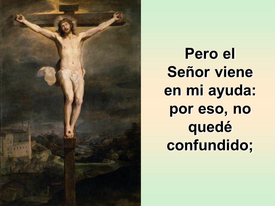 Pero el Señor viene en mi ayuda: por eso, no quedé confundido;