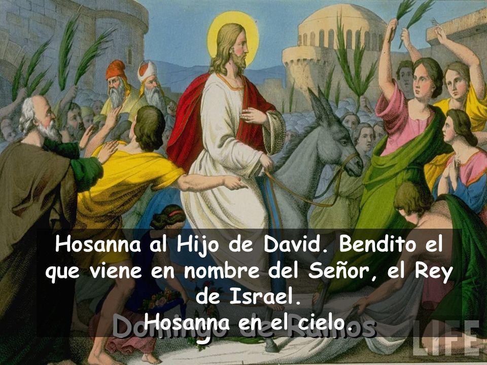 Hosanna al Hijo de David