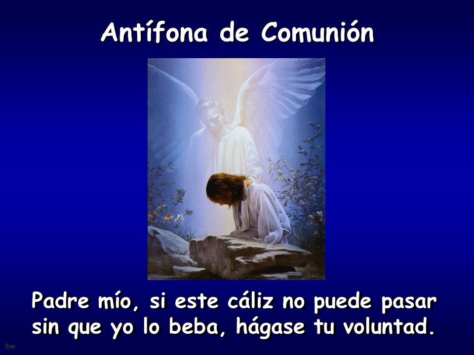Antífona de Comunión Padre mío, si este cáliz no puede pasar sin que yo lo beba, hágase tu voluntad.