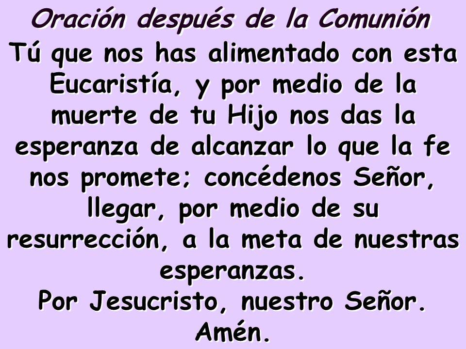 Oración después de la Comunión