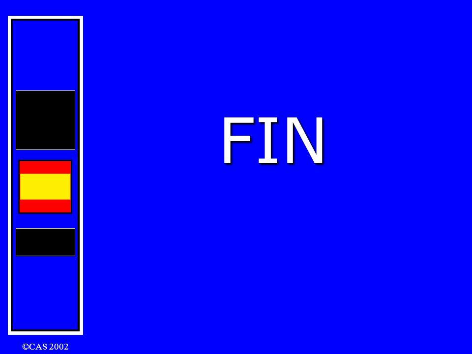 FIN ©CAS 2002