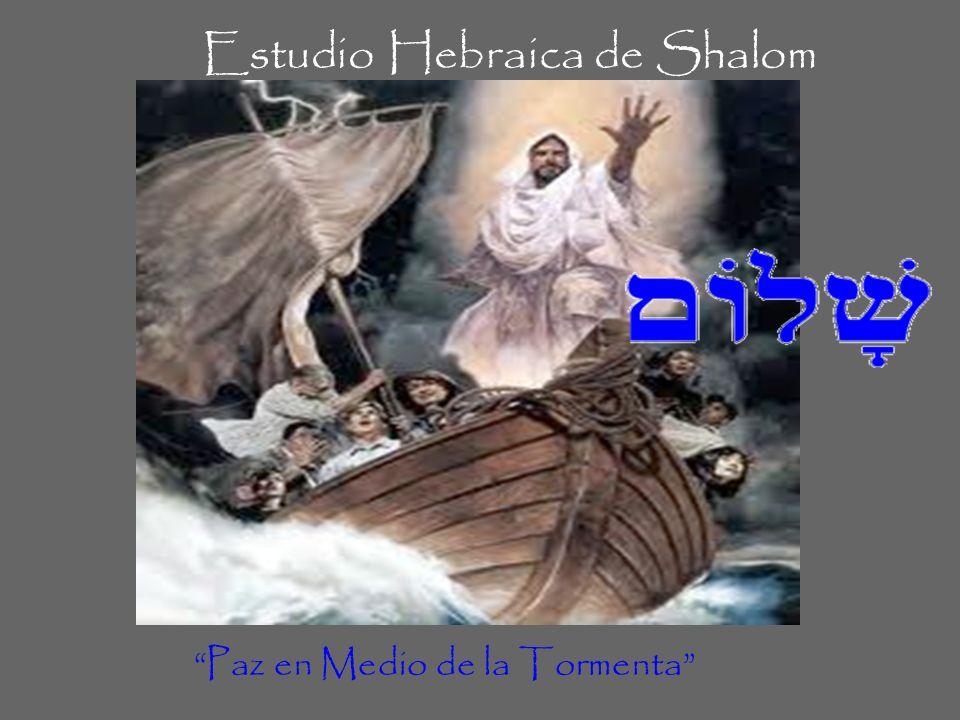 Estudio Hebraica de Shalom