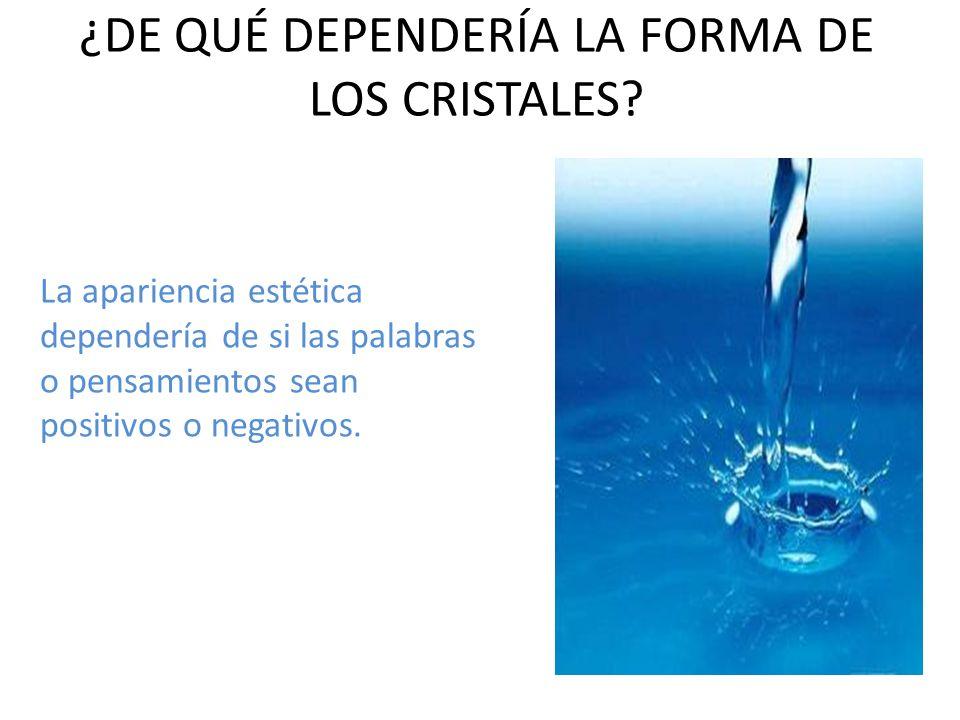 ¿DE QUÉ DEPENDERÍA LA FORMA DE LOS CRISTALES