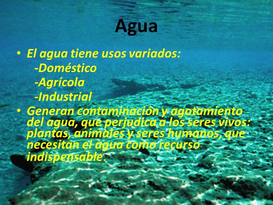 Agua El agua tiene usos variados: -Doméstico -Agrícola -Industrial