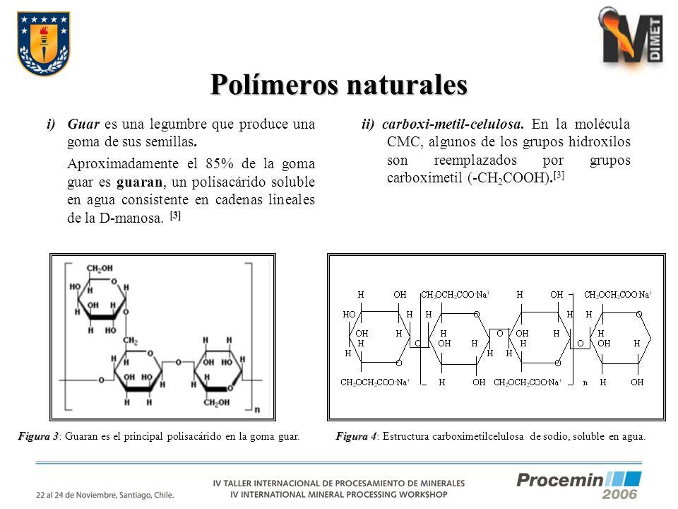 Polímeros naturales Guar es una legumbre que produce una goma de sus semillas.