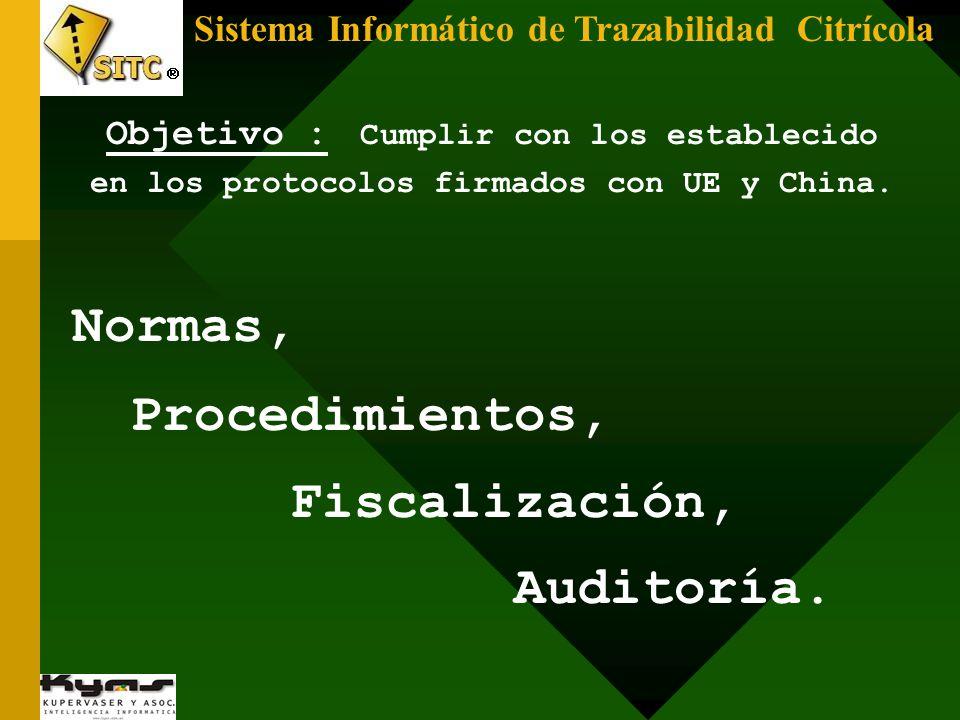 Normas, Procedimientos, Fiscalización, Auditoría.