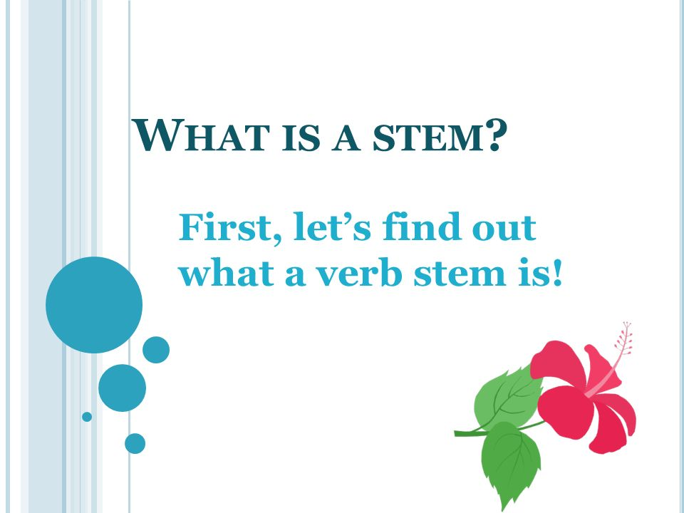 First, let's find out what a verb stem is!